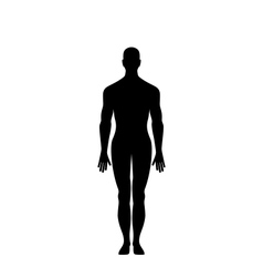 Man Silhouette Isolated vector image