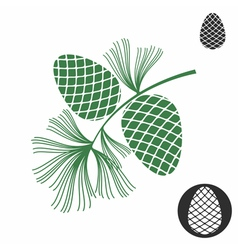 Pine cone vector