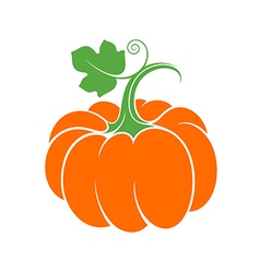 Pumpkin with leaf vector