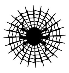 Spider icon simple style vector