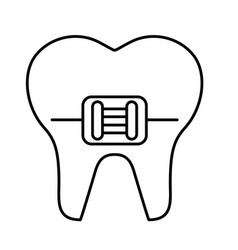 Tooth with orthodontic bracket isolated icon vector