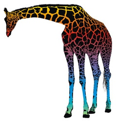 giraffe rainbow vector image