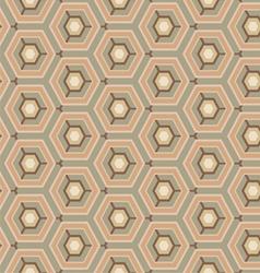 vintage pattern hexagon vector image