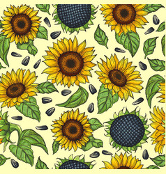 Seamless pattern with yellow sunflowers vector