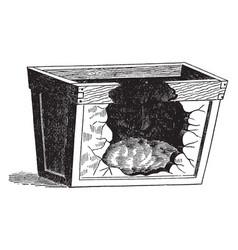 leaves in furnace vintage vector image vector image
