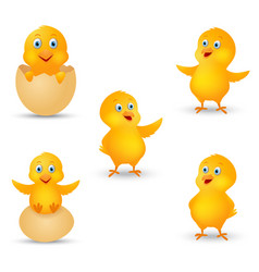 Happy chicks cartoon collection vector