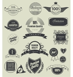 label typography calligraphic design elements vector image