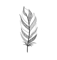 large wide black white feather vector image