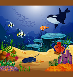 Ocean or sea fish killer whale and stingray vector