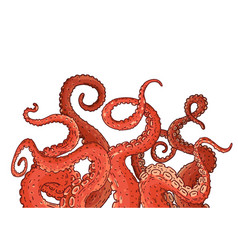Red octopus tentacles reaching upwards vector
