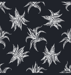 Seamless pattern with hand drawn chalk aloe vector