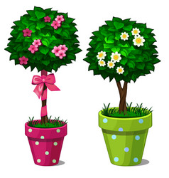 Two decorative bonsai tree with flowers in pots vector