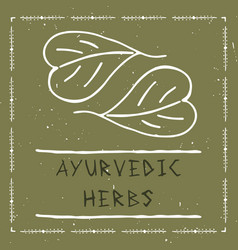 ayurvedic herbal vector image