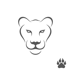 Lioness with paw print vector image vector image
