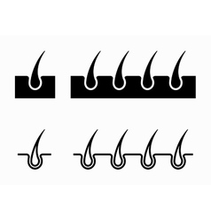 black hair follicle icons set vector image