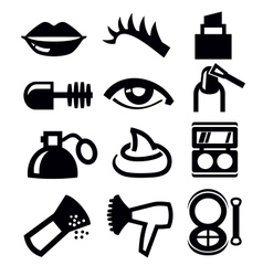 Cosmetics and makeup icon vector