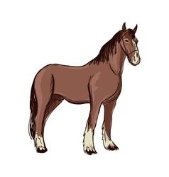 Doodle horse vector