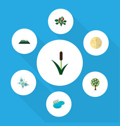 Flat icon bio set of berry tree lunar and other vector