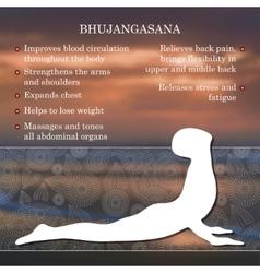 yoga pose infographics benefits practice vector image