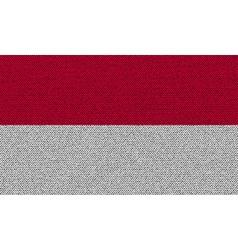 Flags indonesia on denim texture vector