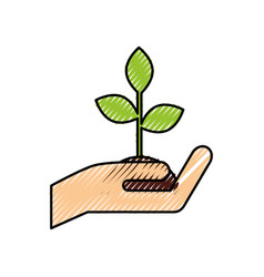 hand holding plant growth business finance concept vector image vector image
