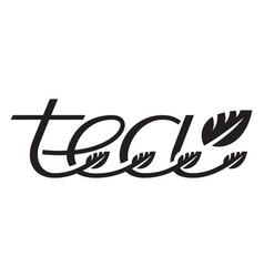 tea logo template design vector image