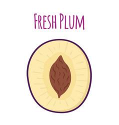 half of ripe purple plum cartoon flat style vector image vector image