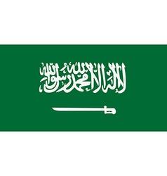Saudi Arabia flag vector image vector image