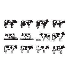 Cow collection set graphic design template vector