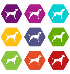 dog icon set color hexahedron vector image
