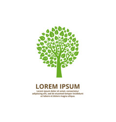 green tree logo company vector image