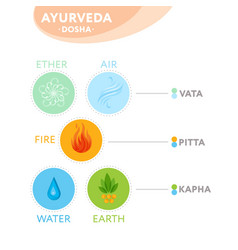 Vata pitta and kapha doshas with ayurvedic icons vector