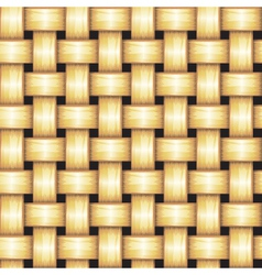 Rattan Seamless Texture vector image vector image