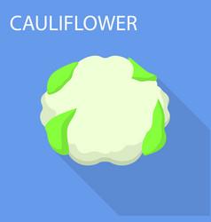 cauliflower icon flat style vector image