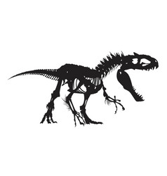 dinosaur skeleton vector image