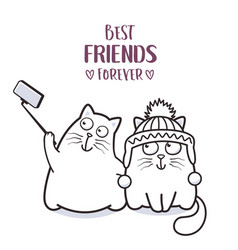 Funny cats best friends taking selfie vector