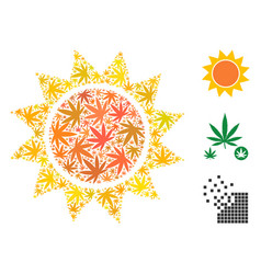 Sun composition of weed leaves vector