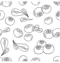 hand drawn outline seamless pattern with blueberry vector image
