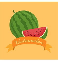 Watermelon Fruit Banner Orange vector image