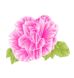 Camellia Japonica pink flower polygons vector