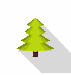 Canadian fir icon flat style vector