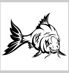 Carp fish isolated vector