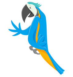funny macaw bird cartoon animal character vector image
