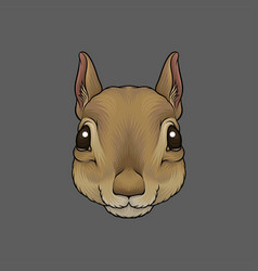 Head of squirrel portrait of wild animal hand vector