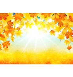 Sunny autumn day vector image