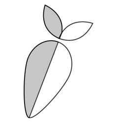 Whole turnip icon vector