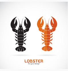 lobster design on white background sea animal vector image
