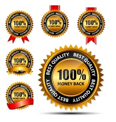 100 money back gold sign label template vector image