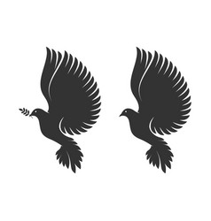 Dove a symbol peace and purity vector