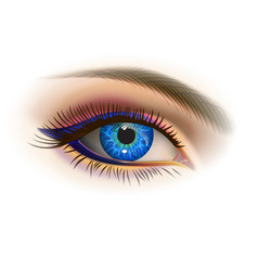 Female blue eye vector
